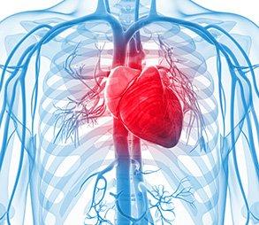 інтервенційнаї кардіологія